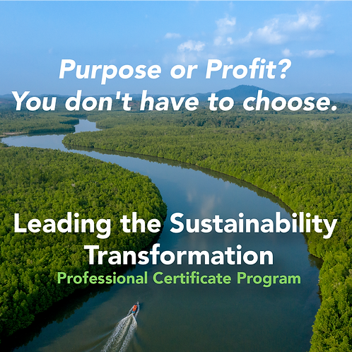 Leading the Sustainability Transformation Professional Certificate Program