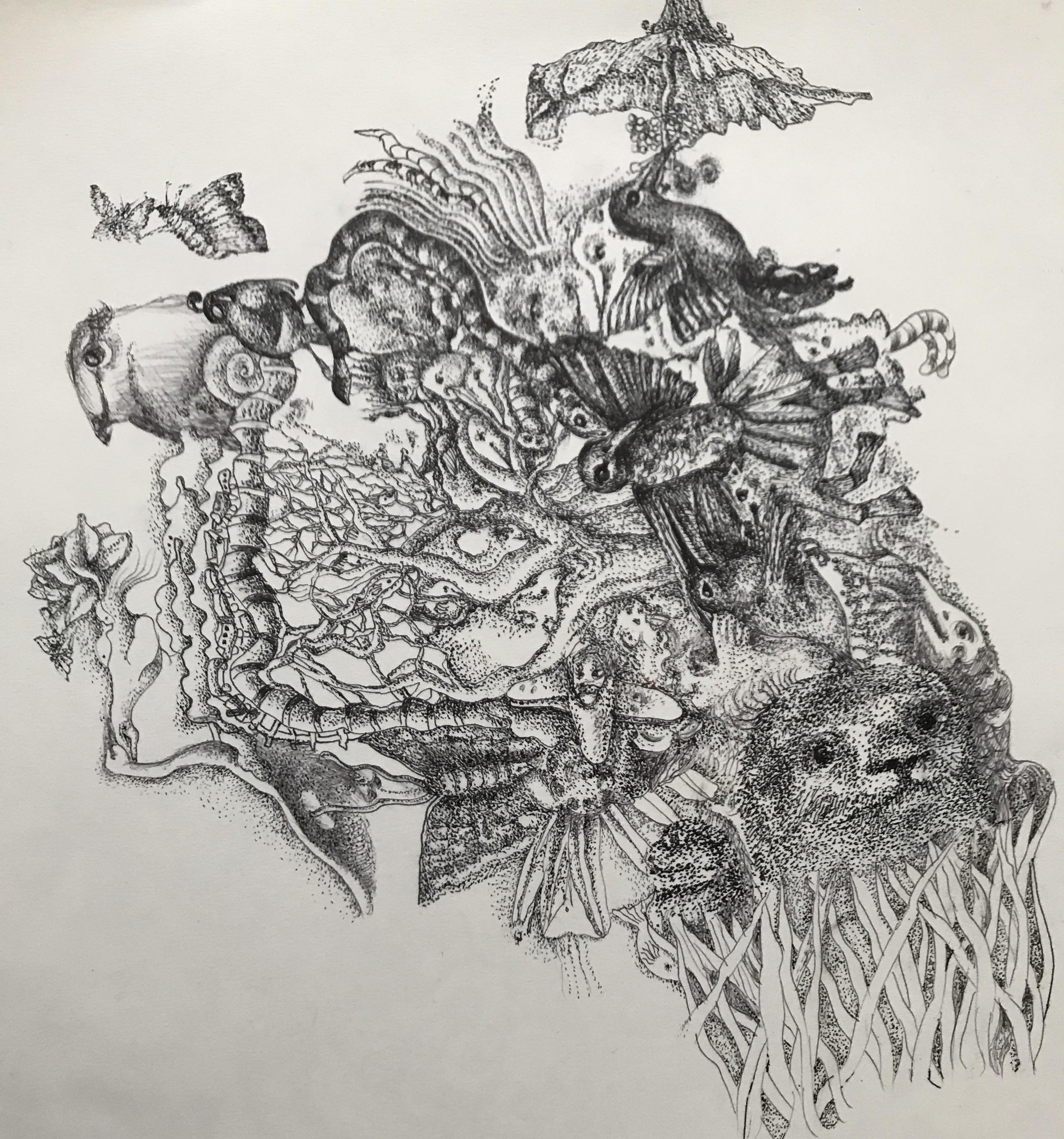 Symbiosis Series