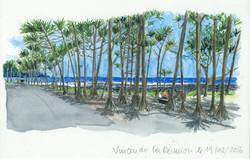 Vincen-do-la-Réunion-le-19-02-2016