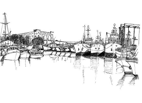 Quay D - Port Louis - Ile Maurice