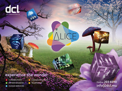 ALICE dcl