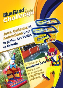 BlueBand Flyer