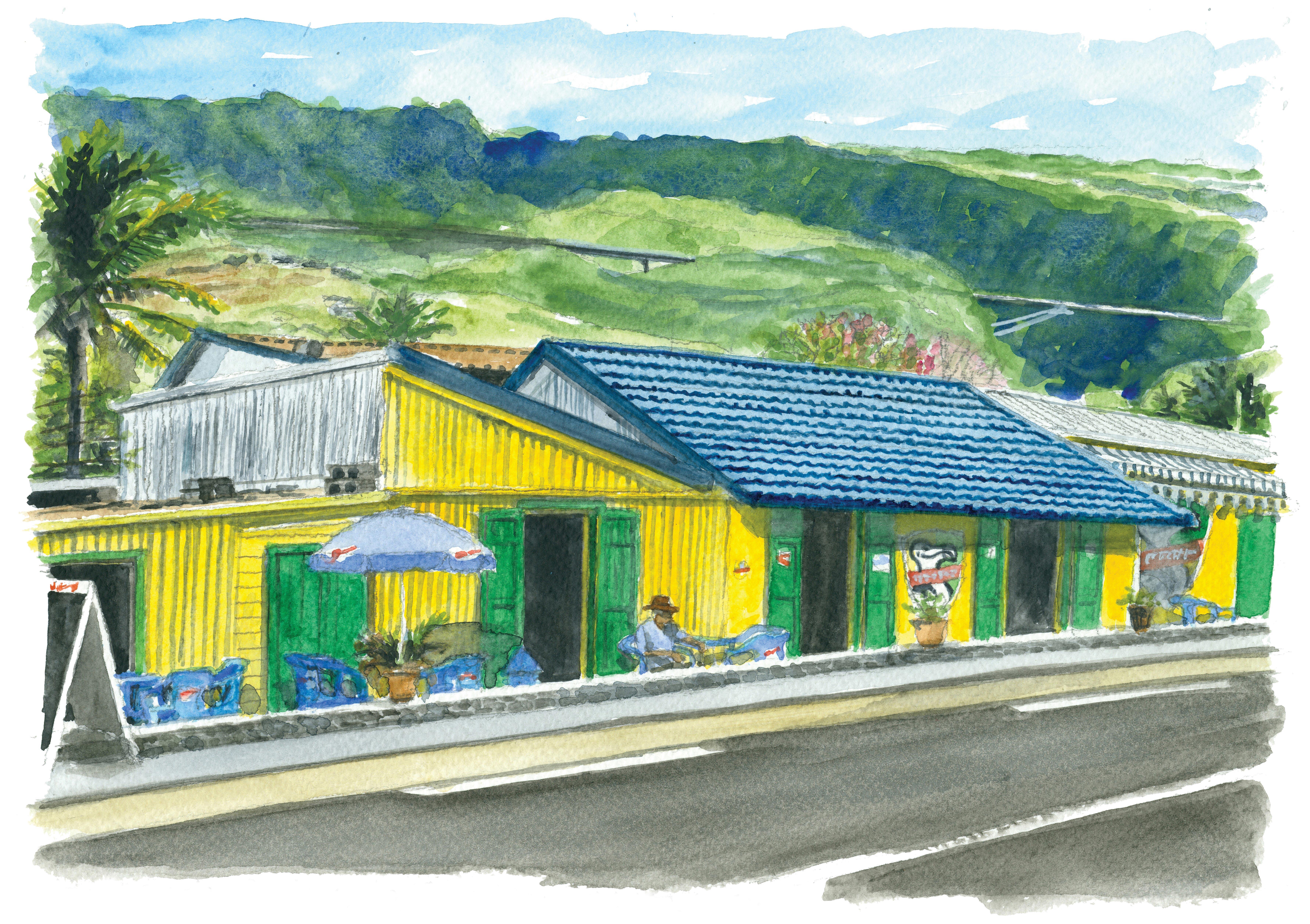 La Grande Ravine - La Réunion
