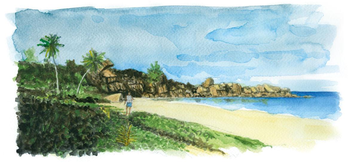 Grande Anse - Seychelles
