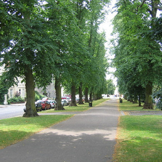 Holly Walk, Royal Leamington Spa