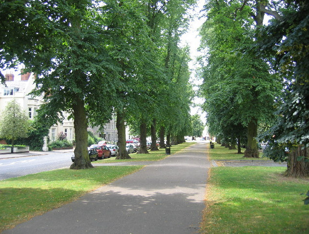 Holly Walk, Royal Leamington Spa