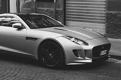 jaguar-nb.png
