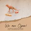 Toddler Program - We are Open!