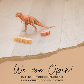 Toddler Program - We are Open!