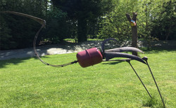 IBIS, la vigie de notre jardin