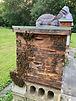 HVF Bees