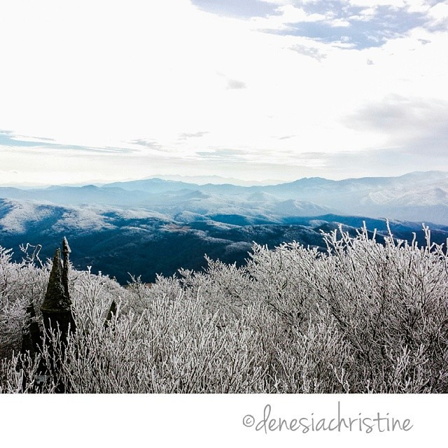 sing winter.jpg