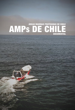 AMPs DE CHILE