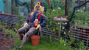 One of the many great scarecrows at Slopefield allotments.