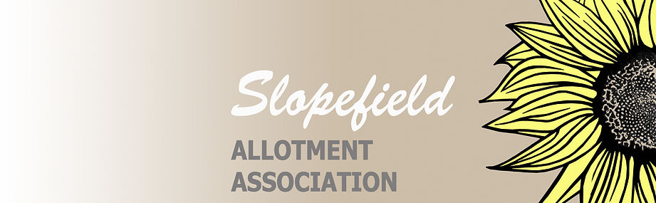 Slopefield news letters