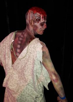 Zombie 2015