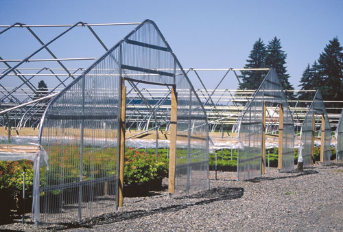 semi_gable_greenhouse_frame