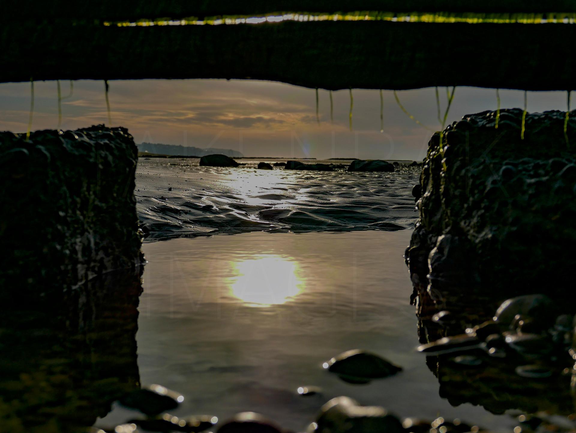 Sunrise and Groynes