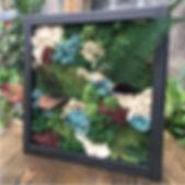 moss wall 1.jpg