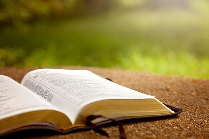 bijbel.jpg