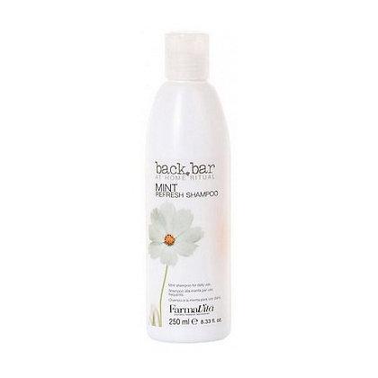 Нейтральный шампунь для всех типов волос Back Bar Mint Shampoo, 250 мл.