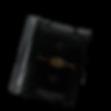 подарочный пакет с лого лана1.png