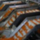 מעליות מבריכות