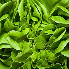 Local Greens Salad