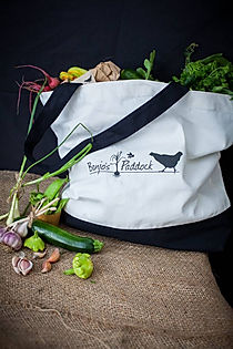 subscription vegetable boxes