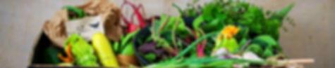 Fresh and local seasonal vegetable boxes
