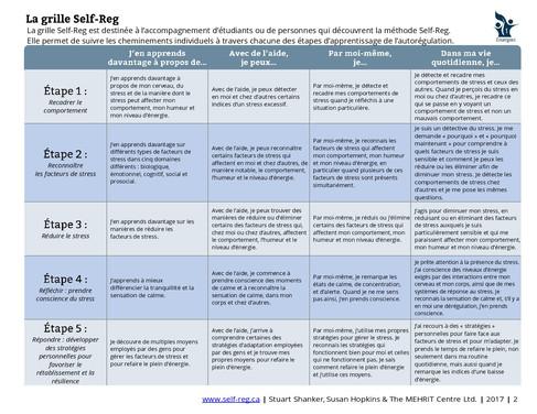 La grille Self-Reg