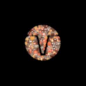 Varda Ventures Vector.png