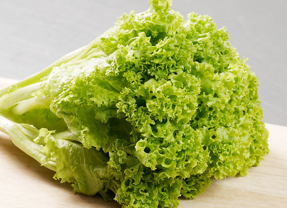 Green Coral Lettuce 100g
