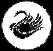 cropped-cropped-black-swan-1_edited_edited_edited.png