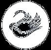 cropped-cropped-black-swan-1_edited_edit