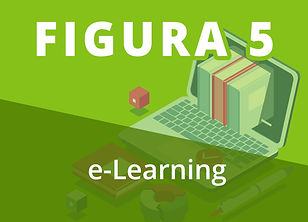 F5 LEAR.jpg