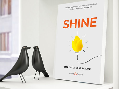 SHINE - Paperback in English 181 pages