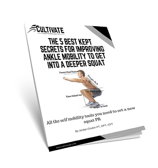 ankle mobility cover.png