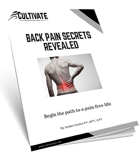 regular back pain 3d cover.png