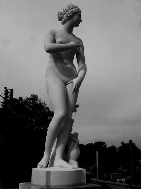 Medici Venus, 2009