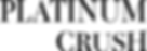 PC-Logo Type only.png
