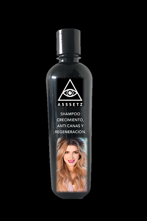 Asssetz Hair
