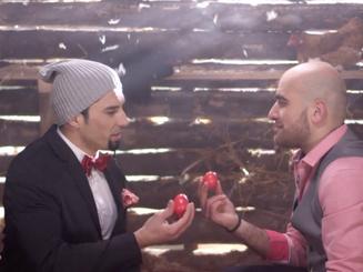 Novruz Commercial