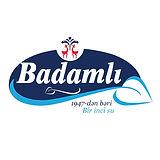 badamli logo.jpg
