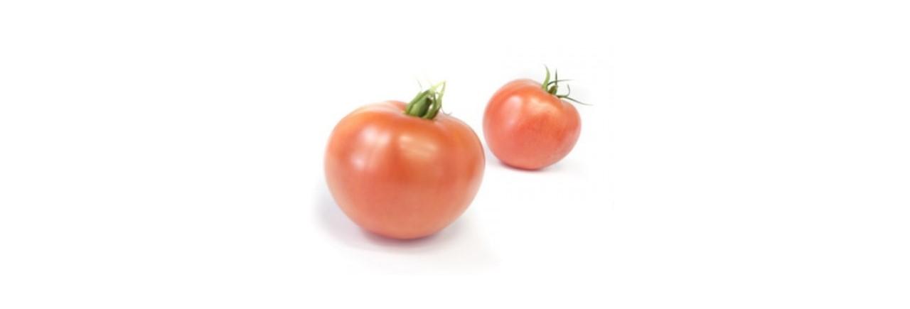 Beefsteak tomato (3)