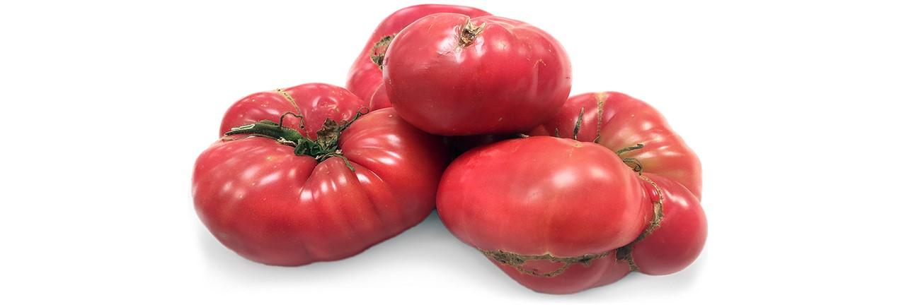 Tomato  (50)