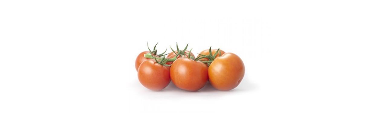 Medium Cocktail tomato vine (3)