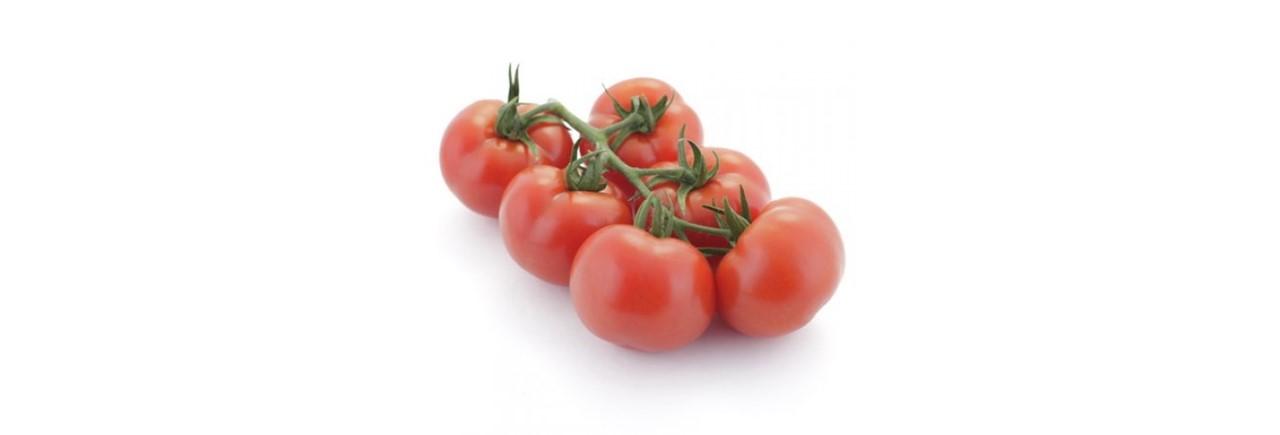 Medium Cocktail tomato vine (1)