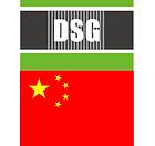 DSG China.png