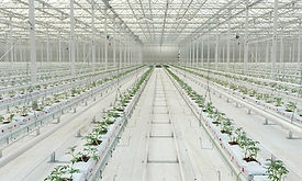 DEMONSTRATION GREENHOUSE.jpg